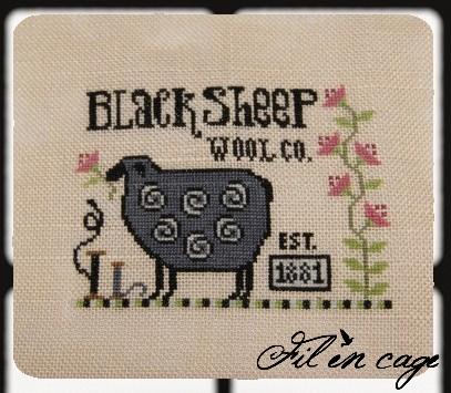 black sheep fini