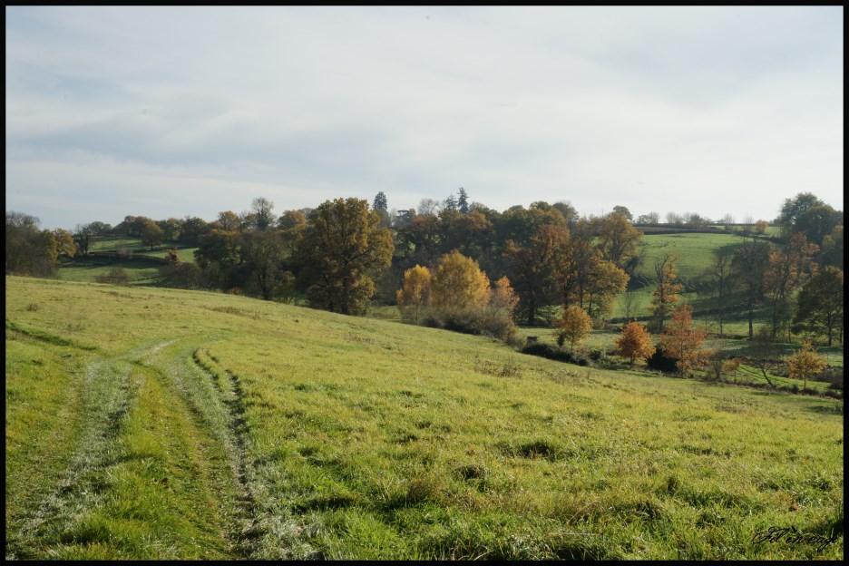 Balade autour de La Châtre entre Chateauroux et Montluçon(36-Indre)